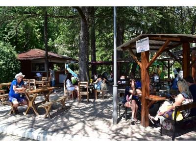 Санаторий «МВО-Сухум»| Кафе